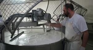 Lavorazione formaggio - FeliceFacchini