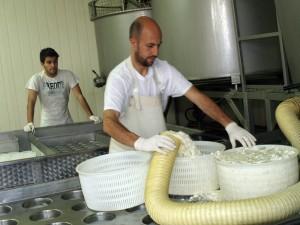 Lavorazione formaggio - Daniele e CarloFacchini