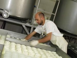 Lavorazione formaggio - Carlo Facchini