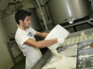 Lavorazione formaggio - Daniele Facchini