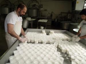 Lavorazione formaggio - Felice Facchini